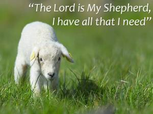 The-Shepherd-sermon